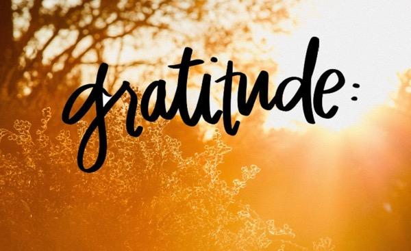 A gratitude pic external content duckduckgo com