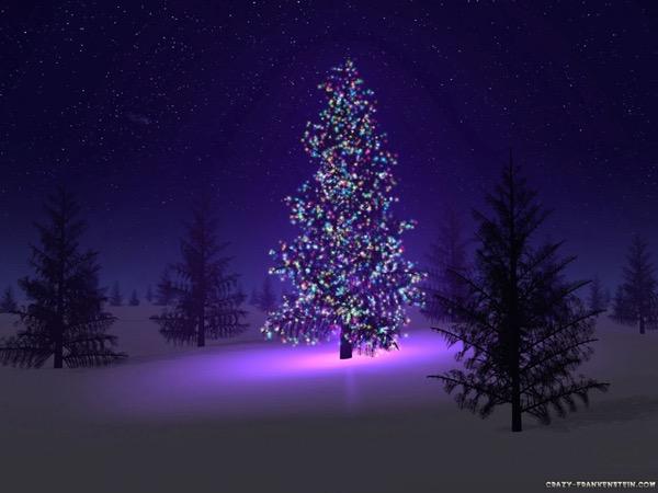 A Christmas Tree 131479781 3913970568626932 7636148784408285202 o